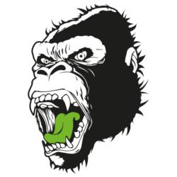 Logo Drome new 2020